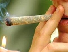 Употребление легких наркотиков подрывает доверительные отношения между компанией и сотрудником