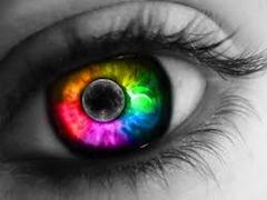 Муниципалитет Палермо отказывается от дискриминации гей-пар в сфере различных социальных услуг, таких как здравоохранение, образование, спорт, проведение досуга и пр. Всем зарегистрировавшимся гомосексуальным парам будут предоставлены права на получение льгот