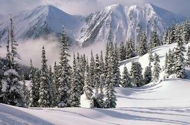 Из-за сильного ночного снегопада в Кортине и соседних населенных пунктах были повреждены линии электропередач и отсутствовало энергоосвещение.